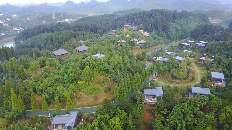 地点:九龙山国家级森林公园。此照片呈现的是以高标准升级打造了生态木屋酒店、悬挑茶室项目.JPG