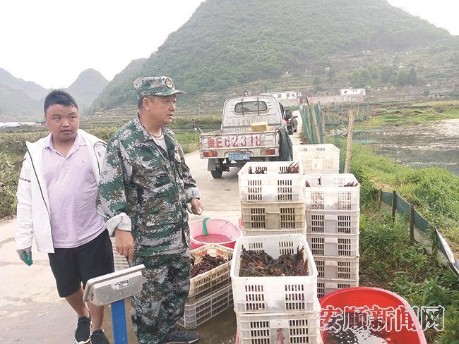 """马官村""""兵支书""""周忠带领群众把收获的龙虾装箱.jpg"""