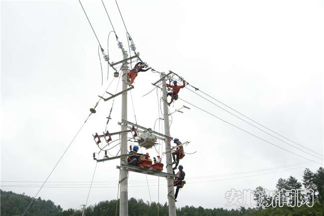 紫云供电局抓紧缺陷隐患的处理工作。.jpg